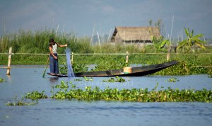 Inle24