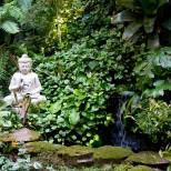 'My' back garden...